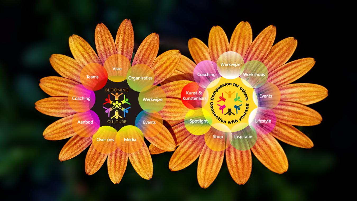 Ga op avontuur op deze interactieve site en ontdek spelenderwijs de natuurcyclus in onze aanpak. Links staat de Blooming Culture bloem voor Joyful Organiseren. Rechts staat de bloem voor Joyful Leven.
